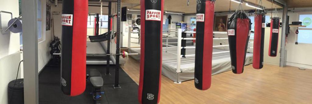 Arnold Boxfit 4133 - Fitnesszone, Krafttrainingsbereich und Sparring-Bereich